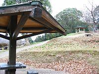 剣岳公園のスイセン