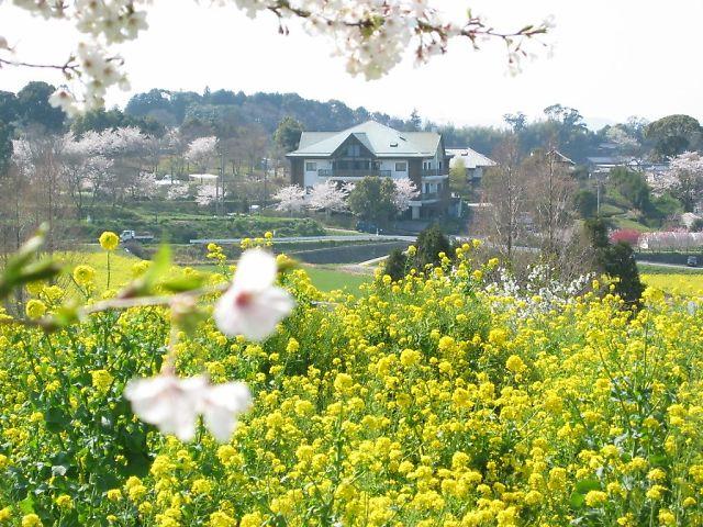 ふる里村の春