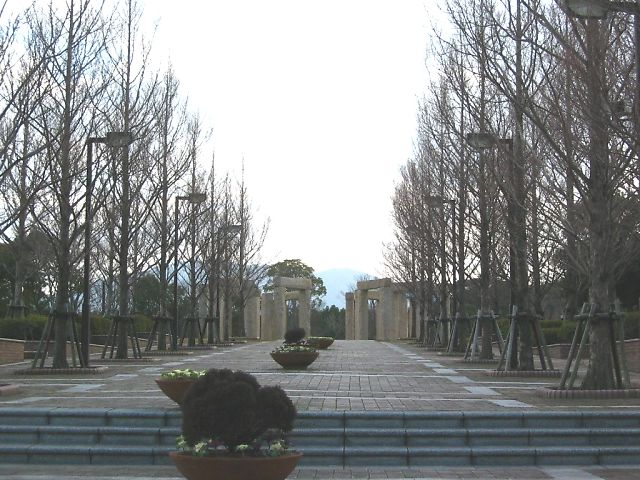 20060126085253.jpg