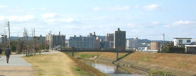 釣り川桜公園