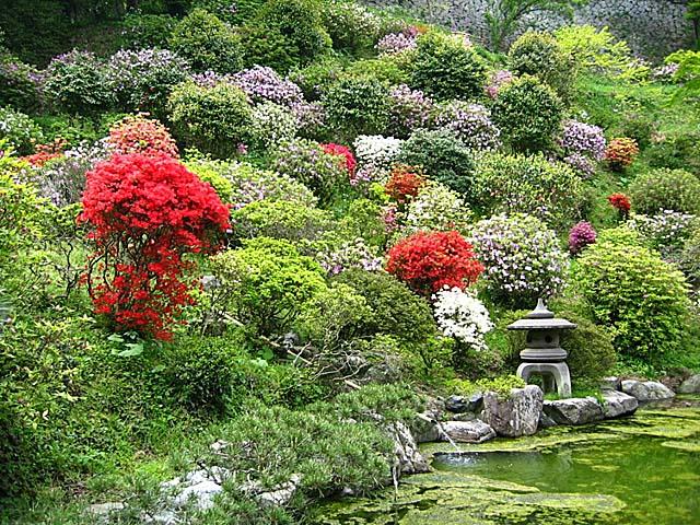 ツツジ庭園