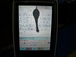 s-CIMG0060.jpg