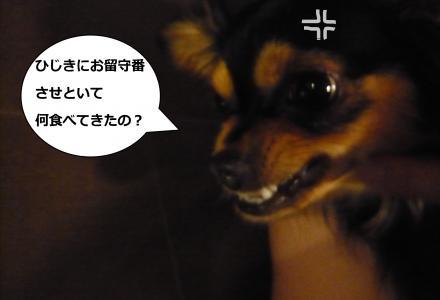 017_convert_20090703231743.jpg