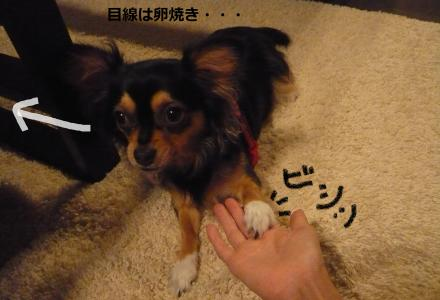 縺ウ縺励▲_convert_20090714212601