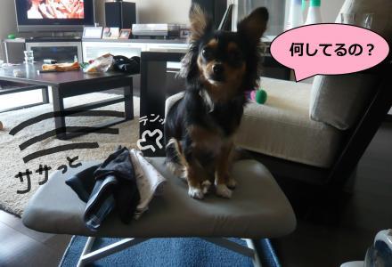 縺輔&縺」縺ィ_convert_20090727113958