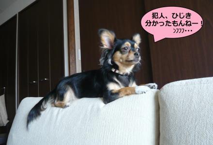 迥ッ莠コ_convert_20090916210934