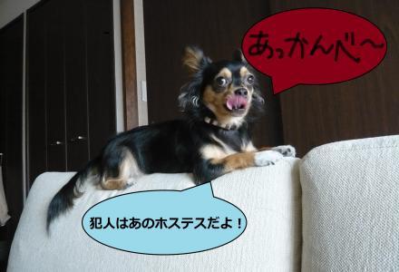 蝨ァ蟾サ_convert_20090916211011