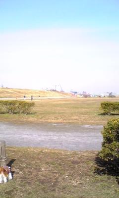 Shibamata2