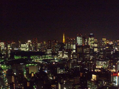 夜景100208