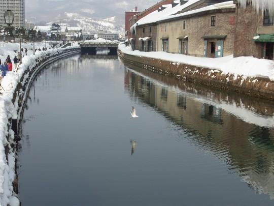 燈 小樽運河24