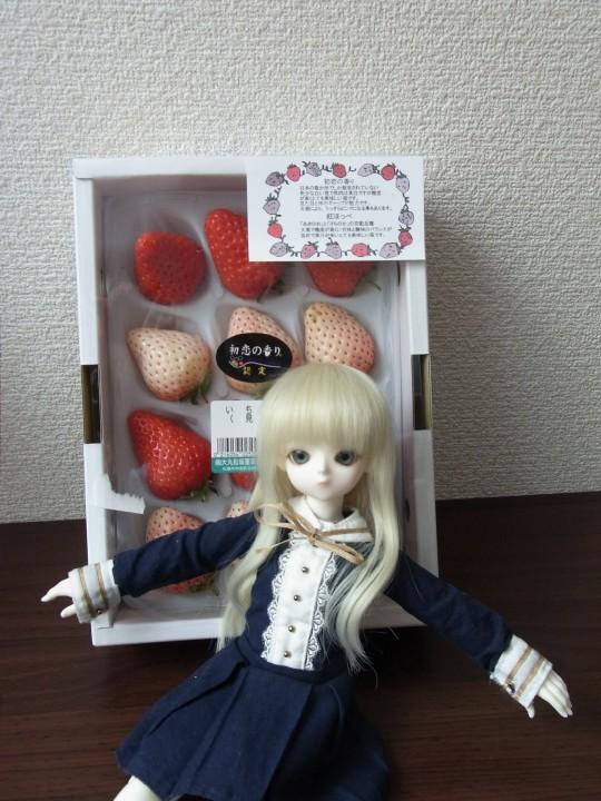 燈 初恋の香り07