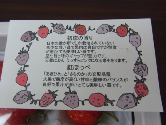 燈 初恋の香り06