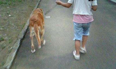 2009.8.14 つる吉散歩