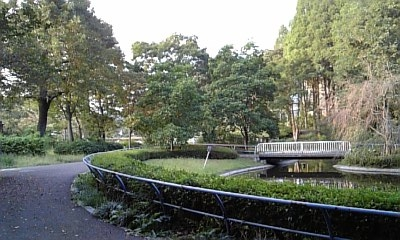 2009.10.4 公園