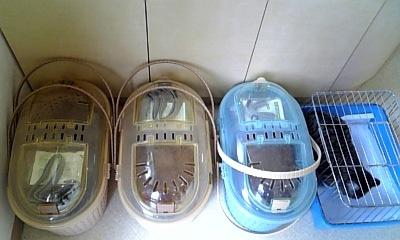 2009.11.29 キロロ