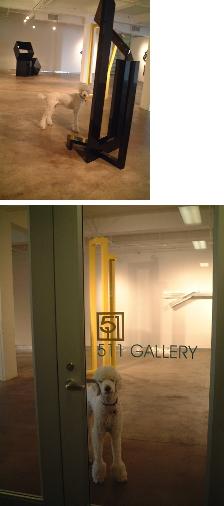gallery7.jpg