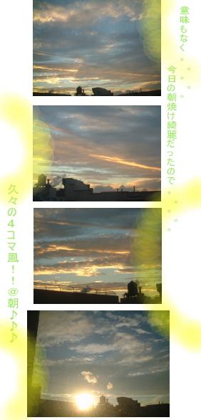 orlin5.jpg