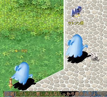 20050910195750.jpg