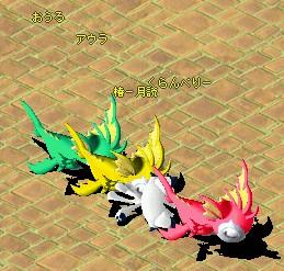 20062805749.jpg