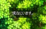 genzai.jpg