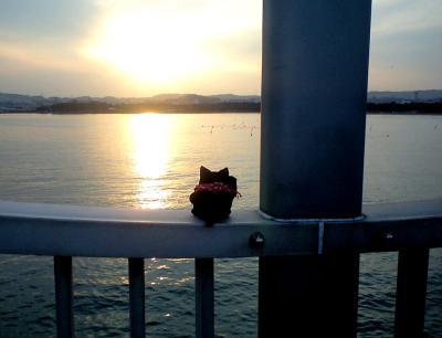 夕日の向こうは・・・。