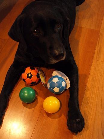 ボールと小梅2