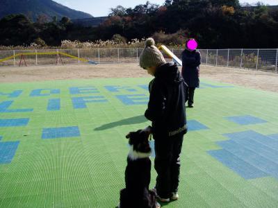 snap_tyutowen_2009120223044.jpg