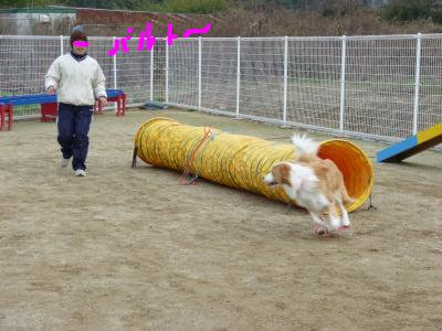 snap_tyutowen_201021135535.jpg