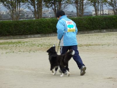 snap_tyutowen_201035135620.jpg
