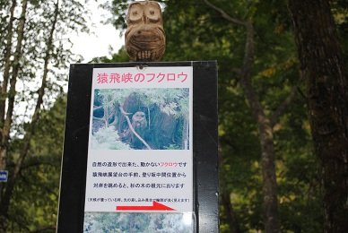 欅平観光2