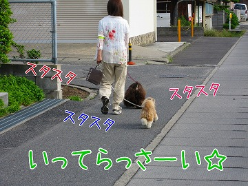 20090525 (1)