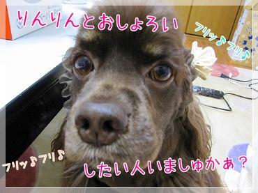20090612(8).jpg
