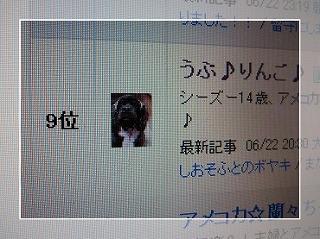 20090623(4).jpg