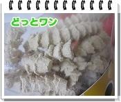 20090708(4).jpg