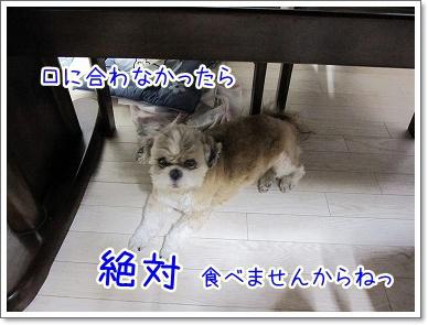 20090714(3).jpg