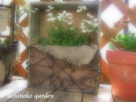 飾り植木箱