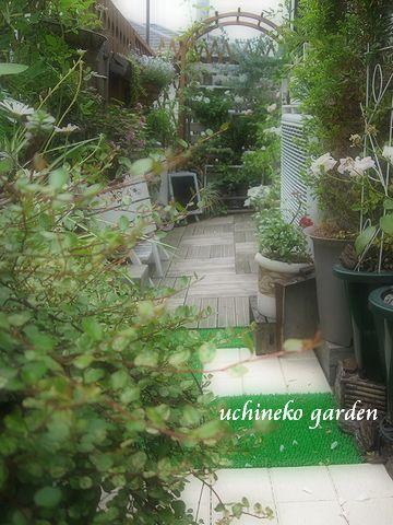 ベランダ 西側ガーデン