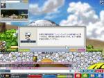Maple0002.jpg