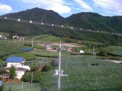 200907勝沼6