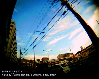 IMG_09913e.jpg