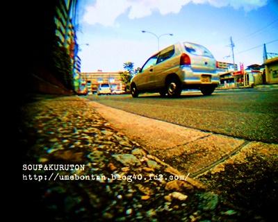 IMG_09914d.jpg