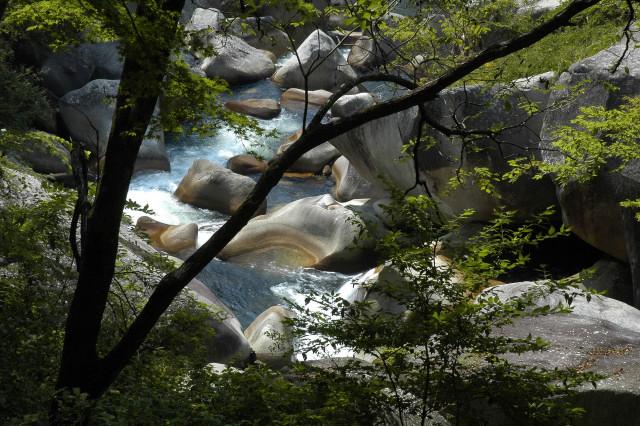 2008-10-04_11-53-46.jpg