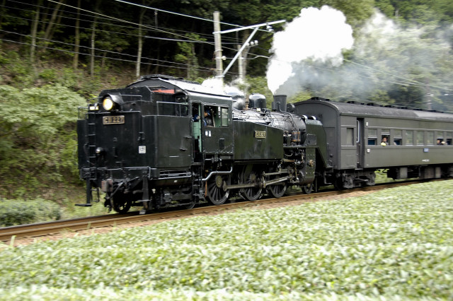 2008-10-12_15-55-43.jpg