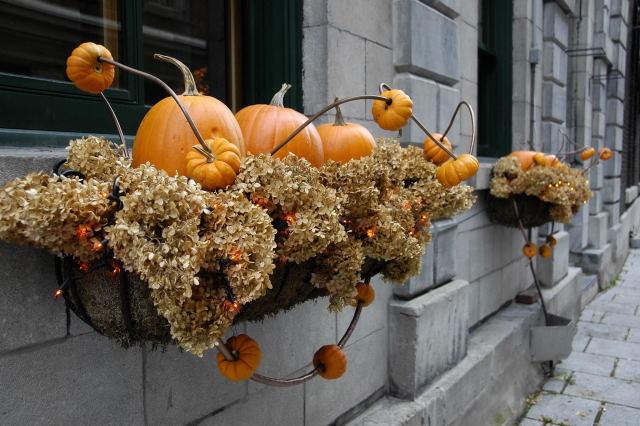 2008-10-27_04-27-46.jpg