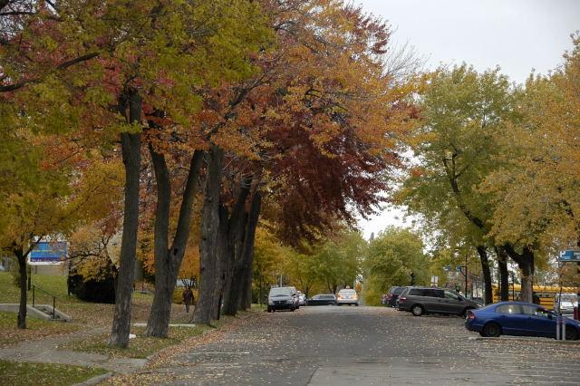 2008-10-27_21-56-36.jpg
