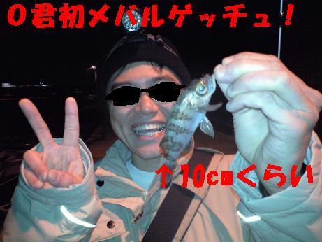 CA3A0387.jpg