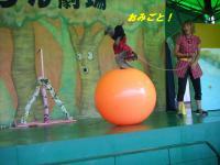 2010_1001rikujyou0038_convert_20101003064056.jpg