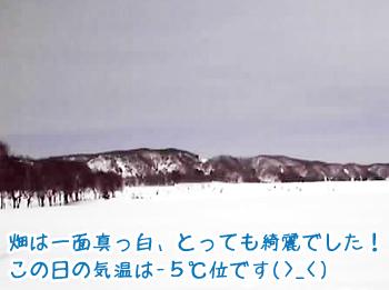 obihiro02.jpg