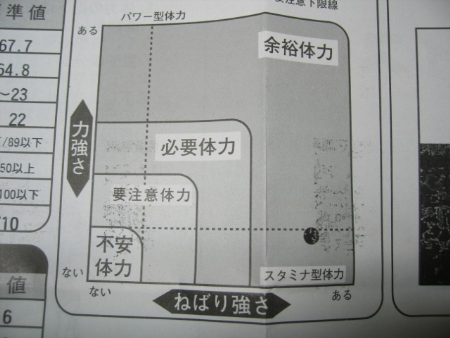 IMG_4730_t.jpg