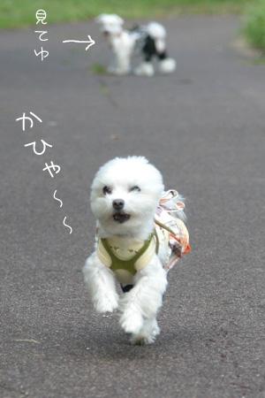 10_10_8754.jpg